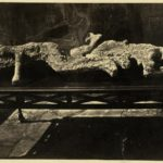 Friedrich Howanietz POMPEII VICTIMS