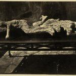 Friedrich Howanietz POMPEII VICTIMS
